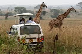 KenyanSafari.org