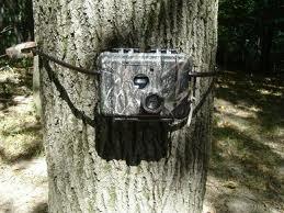 DeerCamera.com